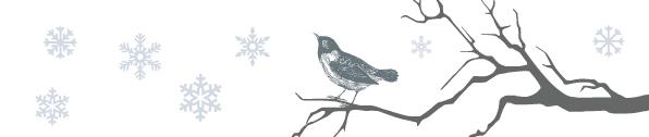 Zima pełna blasku - dekoracje