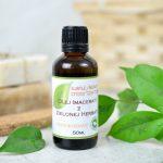 Olej (macerat) z zielonej herbaty